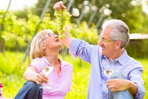 happy seniors sitting in vineyardの写真素材 [FYI00882743]