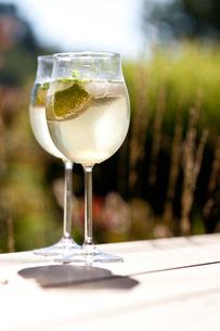 hugo appetizer prosecco ice mint elderflower juiceの写真素材 [FYI00883118]