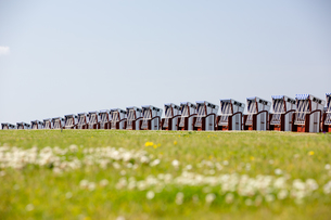 some beach baskets in row on the beach of norderney,germanyの写真素材 [FYI00883198]