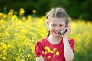 girl using a mobile phoneの写真素材 [FYI00883314]