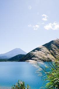 富士山とススキ 朝霧高原の写真素材 [FYI00883539]