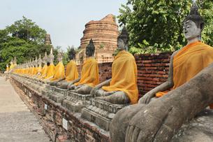 タイ・アユタヤ ワットヤイチャイモンコン 仏像の写真素材 [FYI00883624]