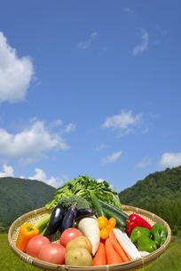 青空と野菜の集合の写真素材 [FYI00883661]