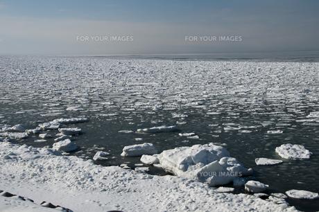 流氷が浮かぶ海の写真素材 [FYI00884076]