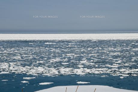 流氷が浮かぶ海の写真素材 [FYI00884079]