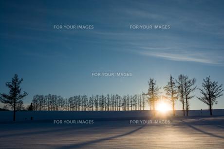 冬の夕暮れの丘の写真素材 [FYI00884086]