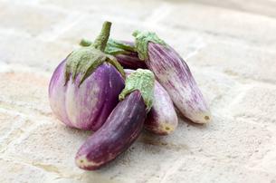 イタリア茄子の写真素材 [FYI00884375]