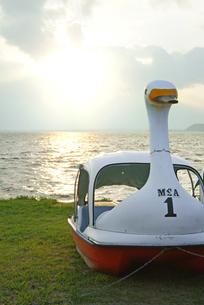 夕暮れのスワンボートの写真素材 [FYI00884381]