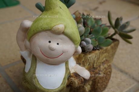 小人の鉢植えの写真素材 [FYI00884470]