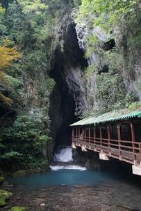 秋芳洞の風景の写真素材 [FYI00884525]