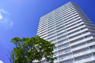 東戸塚の高層マンションの写真素材 [FYI00884681]