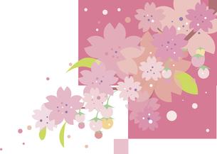 桜の背景のイラスト素材 [FYI00884718]