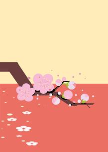 初春の梅の写真素材 [FYI00885046]