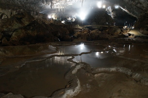 秋芳洞の風景の写真素材 [FYI00885182]