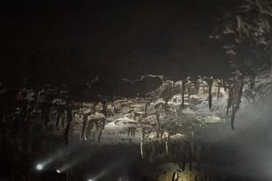 秋芳洞の風景の写真素材 [FYI00885183]