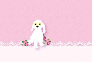 かわいい白い犬のピンクのメッセージカードのイラスト素材 [FYI00885235]