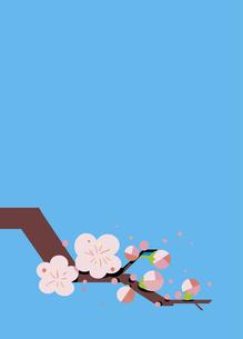 春を告げる梅のイラスト素材 [FYI00885434]