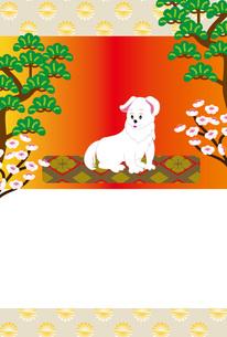 可愛い白い犬と松と梅の花の和風ポストカードのイラスト素材 [FYI00885646]