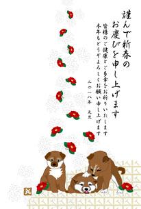 可愛い柴犬の子犬と赤い椿の花の和風イラスト年賀状テンプレートのイラスト素材 [FYI00885655]
