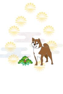 柴犬と菊の花模様の和風イラストのポストカードのイラスト素材 [FYI00885660]