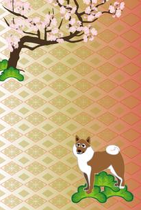 柴犬と梅の木の和風イラストのポストカードのイラスト素材 [FYI00885662]