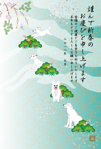 白い犬と松と梅の花の和風イラスト年賀状テンプレート 若草色のイラスト素材 [FYI00885678]