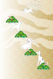 白い犬と松と梅の花の和風イラストのポストカードの写真素材 [FYI00885686]