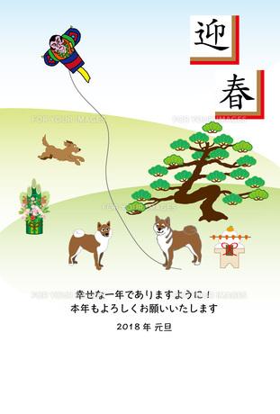柴犬のお正月の年賀状テンプレートのイラスト素材 [FYI00885690]