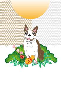 ポップな犬と松竹梅の和風メッセージカード 年賀葉書のイラスト素材 [FYI00885711]
