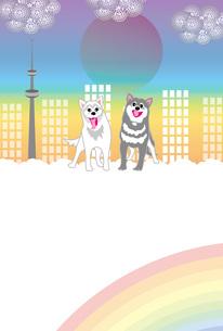 二匹の元気な犬と街とタワーと虹のメッセージカード 葉書テンプレートのイラスト素材 [FYI00885712]