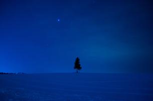 夜の雪原と星空の写真素材 [FYI00885728]