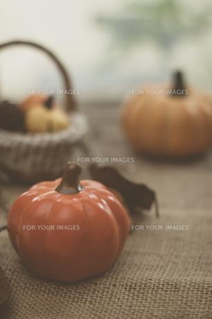 ハロウィンのかぼちゃの写真素材 [FYI00885778]