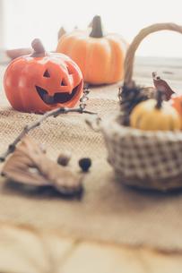ハロウィンのかぼちゃの写真素材 [FYI00885779]
