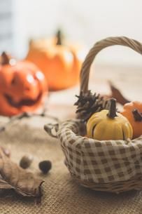 ハロウィンのかぼちゃの写真素材 [FYI00885781]