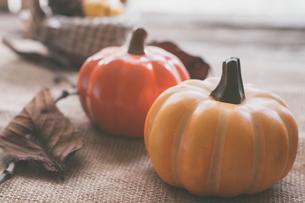 ハロウィンのかぼちゃの写真素材 [FYI00885782]