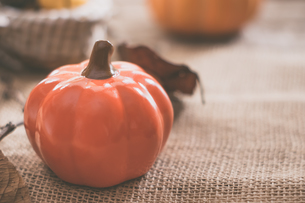 ハロウィンのかぼちゃの写真素材 [FYI00885783]