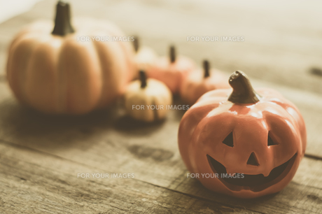 ハロウィンのかぼちゃの写真素材 [FYI00885786]