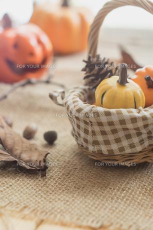 ハロウィンのかぼちゃの写真素材 [FYI00885791]