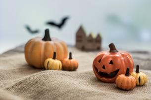 ハロウィンのかぼちゃの写真素材 [FYI00885792]