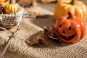 ハロウィンのかぼちゃの写真素材 [FYI00885793]