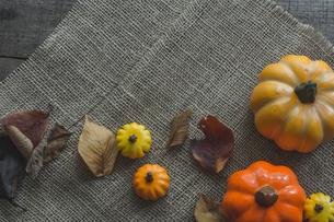 ハロウィンのかぼちゃの写真素材 [FYI00885795]