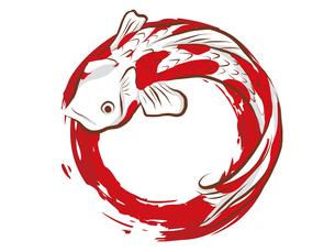 鯉の和柄背景素材のイラスト素材 [FYI00885919]