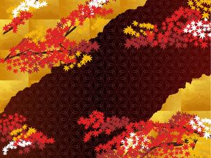 秋の和柄と金の背景のイラスト素材 [FYI00885928]