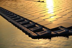 夕日を浴びる太陽光パネルの写真素材 [FYI00886183]