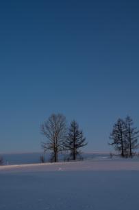 晴れた夕暮れの冬の丘の写真素材 [FYI00886316]