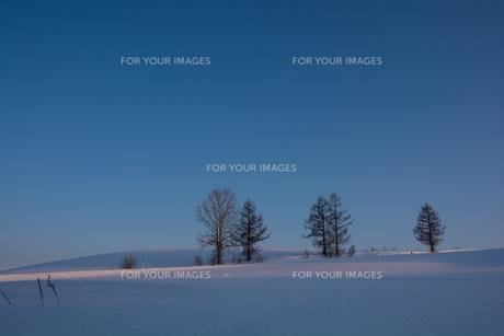 晴れた夕暮れの冬の丘の写真素材 [FYI00886317]