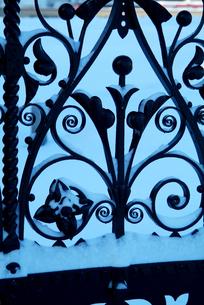 冬の早朝の写真素材 [FYI00886369]