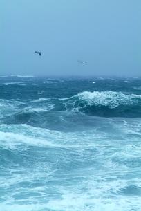 荒れる津軽海峡の写真素材 [FYI00886388]