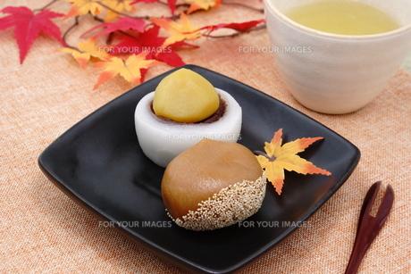 栗の和菓子の写真素材 [FYI00886471]