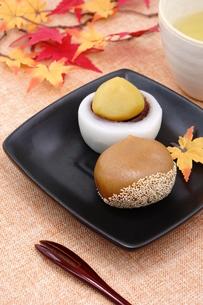 栗の和菓子の写真素材 [FYI00886475]